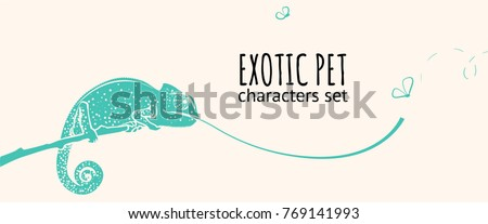 animal character illustration