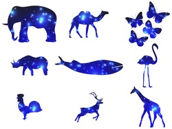 Animal contour with glowing light particles. Double exposure space. Glowing light. Elephant, rhino, whale, giraffe, camel and others. Vector illustration