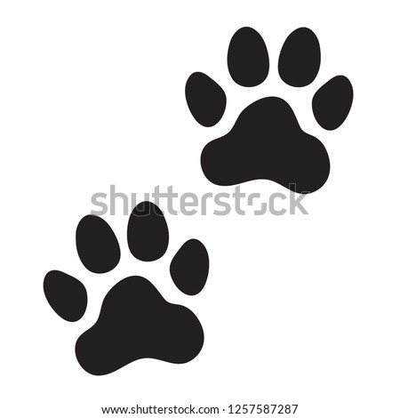 animal  dog  cat  paw prints