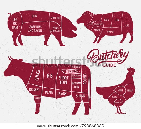 Animal farm set. Cut of beef, pork, lamb, chicken. Poster Butchers diagram for groceries, meat stores, butcher shop, farmer market. Cow, pig, sheep and chicken silhouette. Vector illustration.