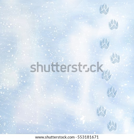animal foot prints to a snowy