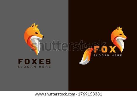 animal fox or foxes logo design two version vector template
