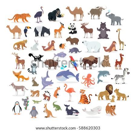animal full length portraits