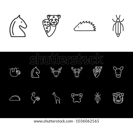 Animal icon set and butterfly with tiger, insect and hedgehog. Savanna related animal icon vector items for web UI logo design.