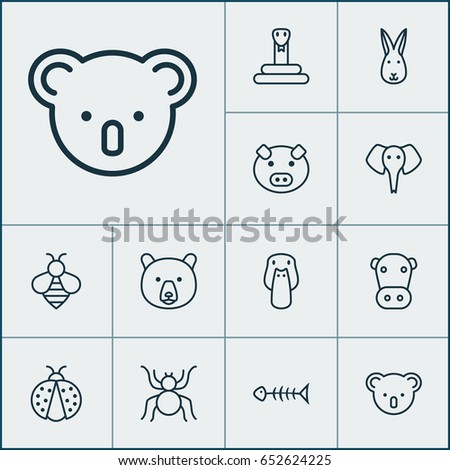 Animal Icons Set. Collection Of Kine, Ladybird, Spider And Other Elements. Also Includes Symbols Such As Bunny, Serpent, Koala.