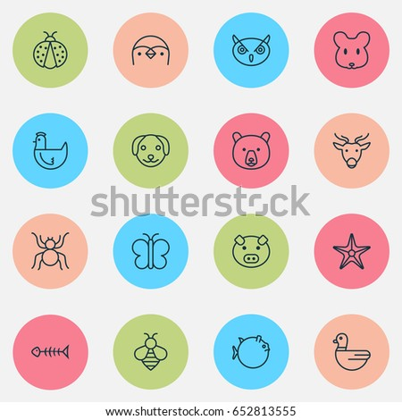Animal Icons Set. Collection Of Puppy, Spider, Rat And Other Elements. Also Includes Symbols Such As Piggy, Insect, Chicken.