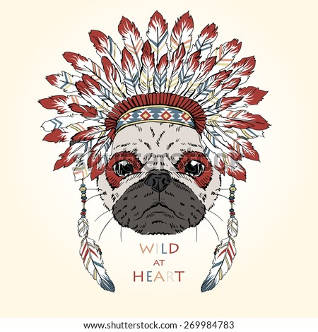 animal illustration  indian pug