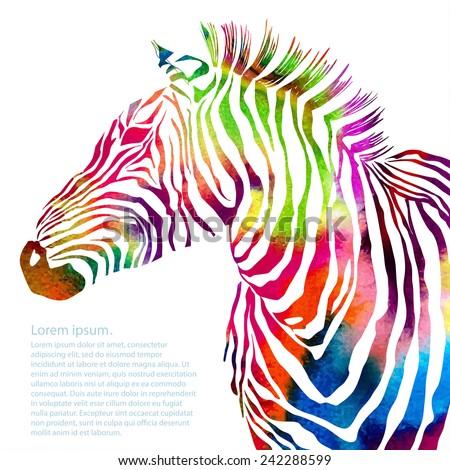 Animal illustration of watercolor zebra silhouette. Vector