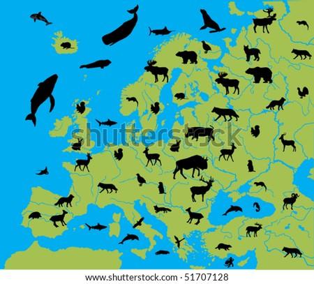animal of europe