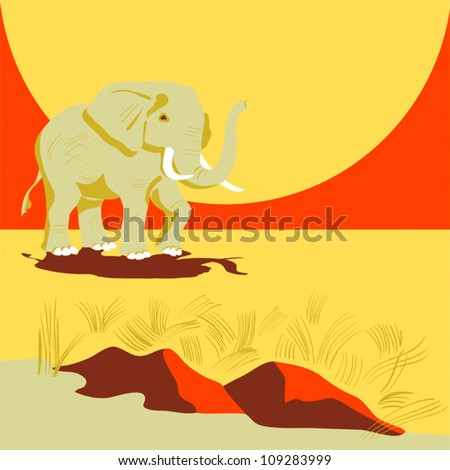 animal on the color background