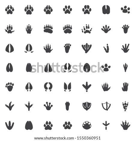Animal paw print vector icons set, modern solid symbol collection, Animals footprints filled style pictogram pack. Signs, logo illustration. Set includes icons as Dog Fox Bear, Raccoon, Badger, Monkey stock photo