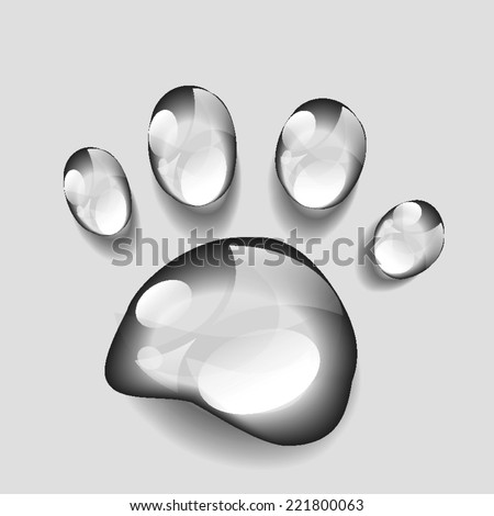 animal paws print  dew vector