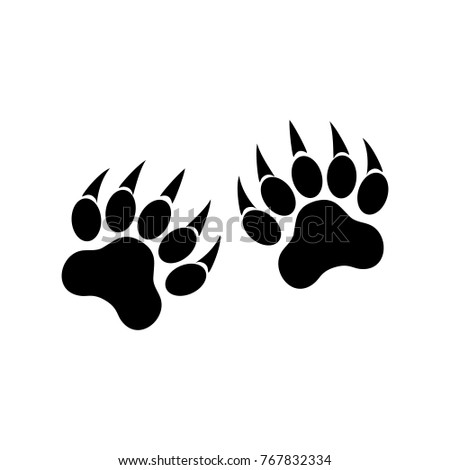 animal paws with claws tiger