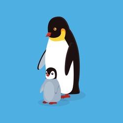 Animal penguin design flat. Bird penguin family vector, cartoon polar animal winter isolated, wild penguin character illustration