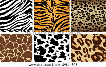 animal print backgrounds. stock vector : Animal Print