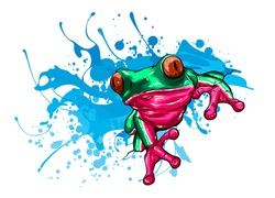 animal Red frog vector illustration