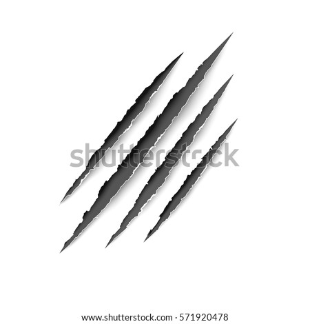 Animal scratches - vector. Claws scratching tiger (cat) vector illustration.