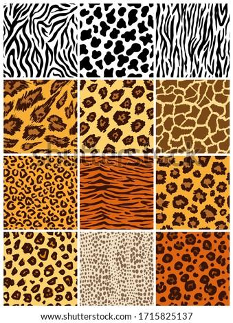 Animal seamless pattern set. Mammals Fur. Collection of print skins. Predators Camouflage. Cheetah Giraffe Zebra Leopard Holstein cattle Snake Jaguar. Printable Background. Vector illustration.