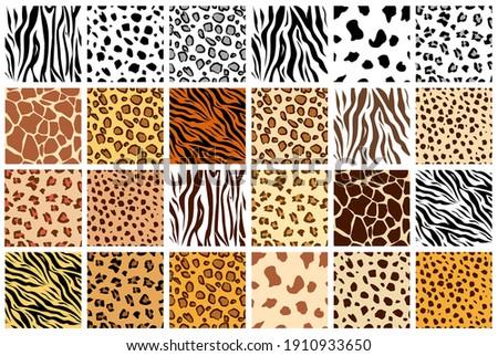 Animal seamless pattern set. Mammals Fur. Collection of print skins. Predators. Cheetah, Giraffe, Tiger, Zebra, Leopard, dalmatian, Сattle, Jaguar. Printable Background. Vector illustration.
