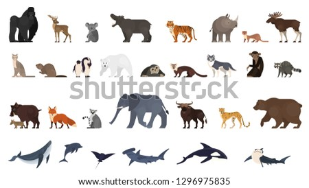 Animal set. Collection of exotic and wild animals and ocean creature. Elephant, monkey and bear. Global fauna. Isolated vector illustration in cartoon style