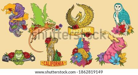 animal set colourful fun design