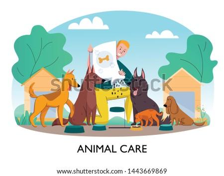 animal shelter feeding dogs