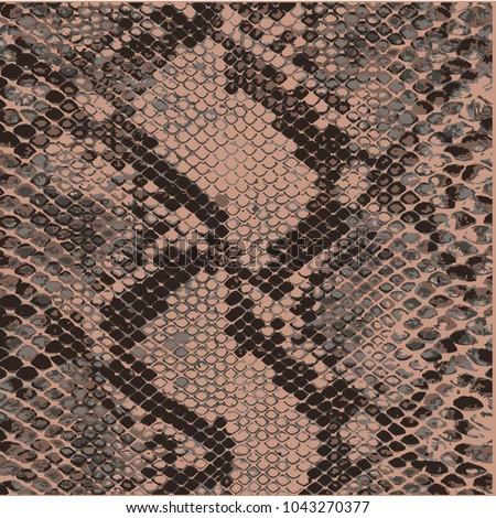 animal skin leopard pattern vector