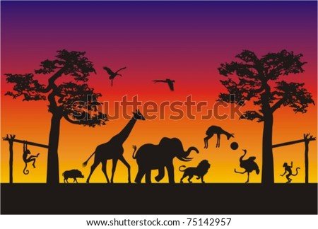 Animal Soccer Match in Africa. Wild animals are having fun playing soccer on a warm evening in the african savannah.