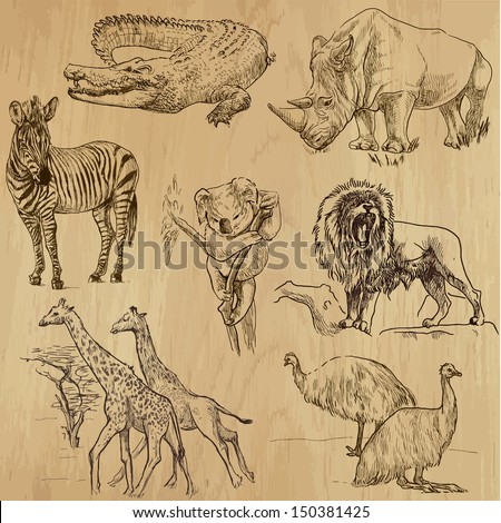 Animals around the World (part 1). Collection of hand drawn illustrations (originals, no tracing). Description: Each drawing comprise of two layers of outlines, colored background is isolated.