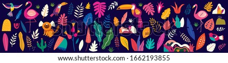 Animals big collection. Animals of Brazil. Vector colorful set of illustrations with tropical flowers, leaves, monkey, flamingo, anteater and birds. Brazil tropical pattern. Rio de janeiro pattern