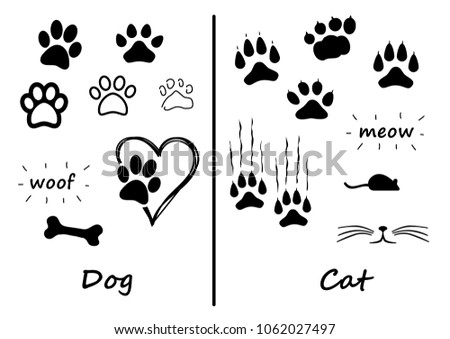 animals footprints foot feet...
