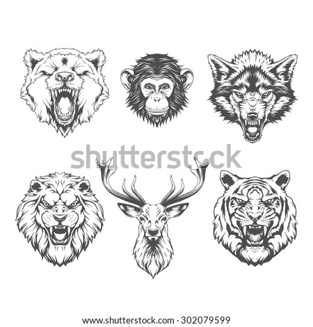 animals heads line art