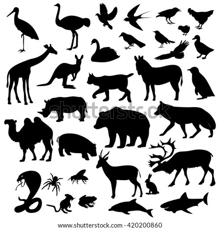 animals icons on white...