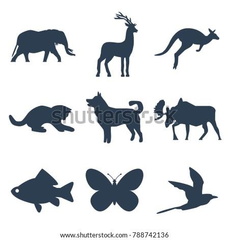 animals icons set on white
