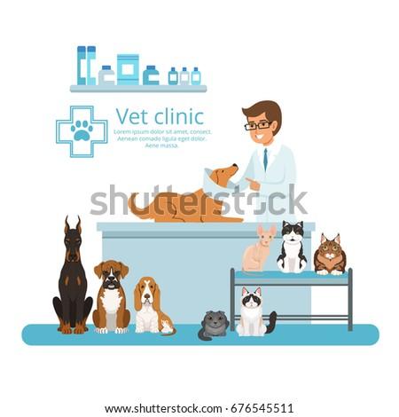 Animals in cabinet of vet hospital. Vector illustration