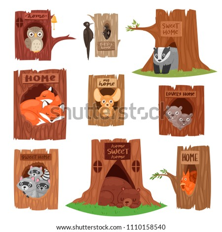 Animals in hollow vector animalistic character in tree hollowed hole illustration set of birds owl or bird on treetops and squirrel bear or fox in hollowtree isolated on white background Foto stock ©