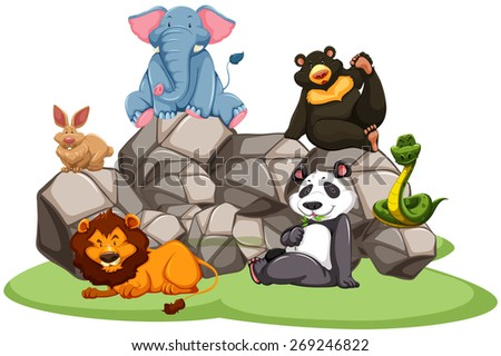Animals in the zoo sitting on rocks and grass