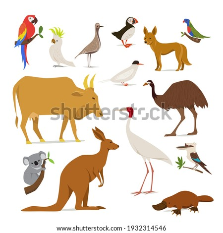 Animals of Australia. Birds, fish and endemic animals of Australia in flat modern style design. Detailed icons of Australia fauna. Nature world.