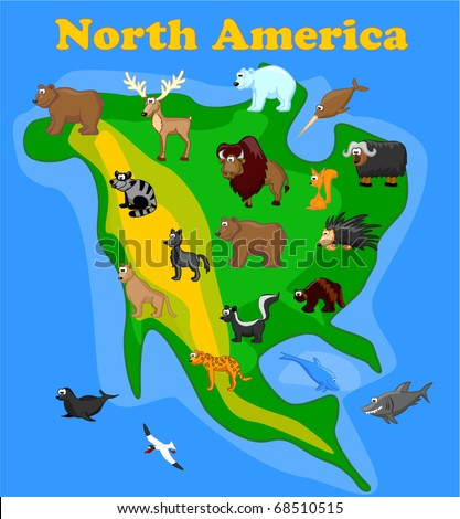 Animals of North America, including grizzly bears, caribou, polar bears, raccoons, bison, porcupine, mountain lion, coyote, skunk, wolverine, seals, jaguar, dolphin, shark, bowhead whale eps 10 - stock vector