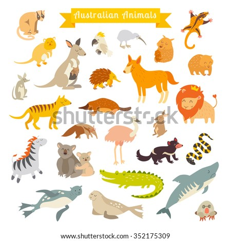 animals of the world  australia