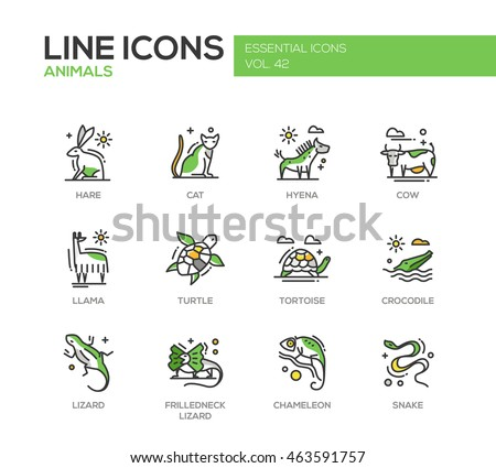 Animals - set of modern vector line design icons and pictograms