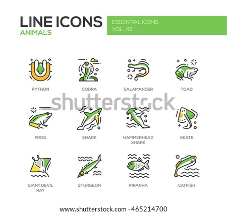 animals   set of modern vector