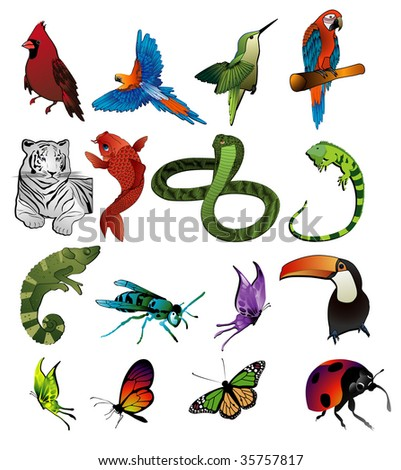 animals vector composition