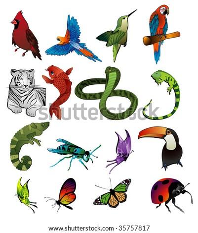 animals vector composition