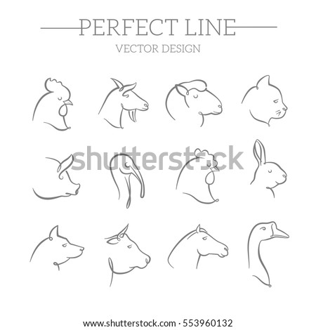 animals vector line icons set