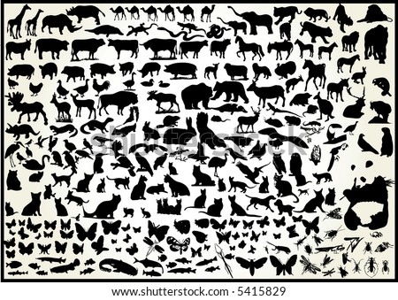 animals 250 vectors