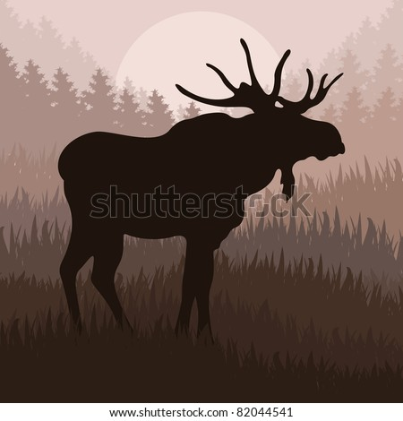 animated moose in wild nature