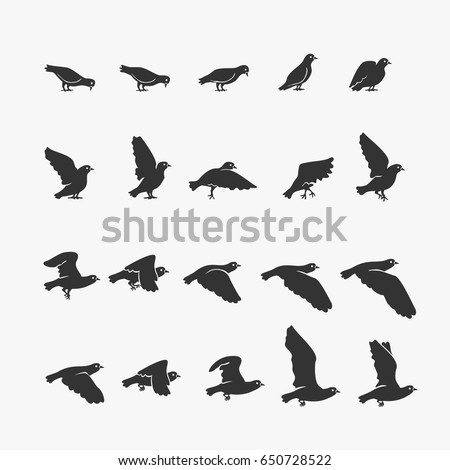 animation dove flying vector
