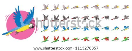 Animations the bird is flying. Parrot Animations. Set of Sprite bird flies.