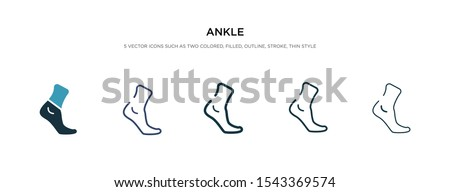 ankle icon in different style vector illustration. two colored and black ankle vector icons designed in filled, outline, line and stroke style can be used for web, mobile, ui